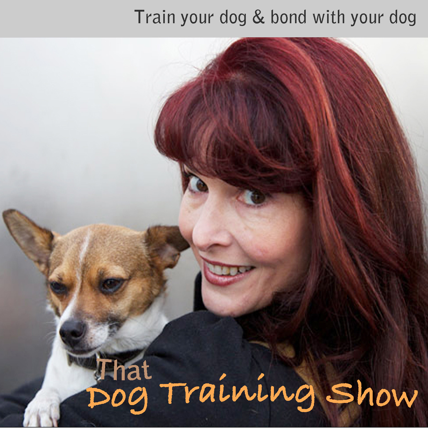 Artwork for That Dog Training Show - Ep.28 - Turning Stress into Motivation