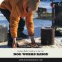 Artwork for Mushing Radio: Feeding on the Trail