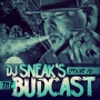 Artwork for DJ Sneak | The Budcast | Episode 16