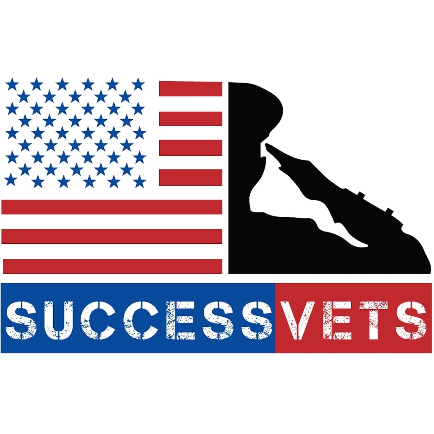 SuccessVets: Advice For Veterans On Life After The Military show art