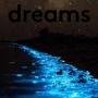 Artwork for dreams