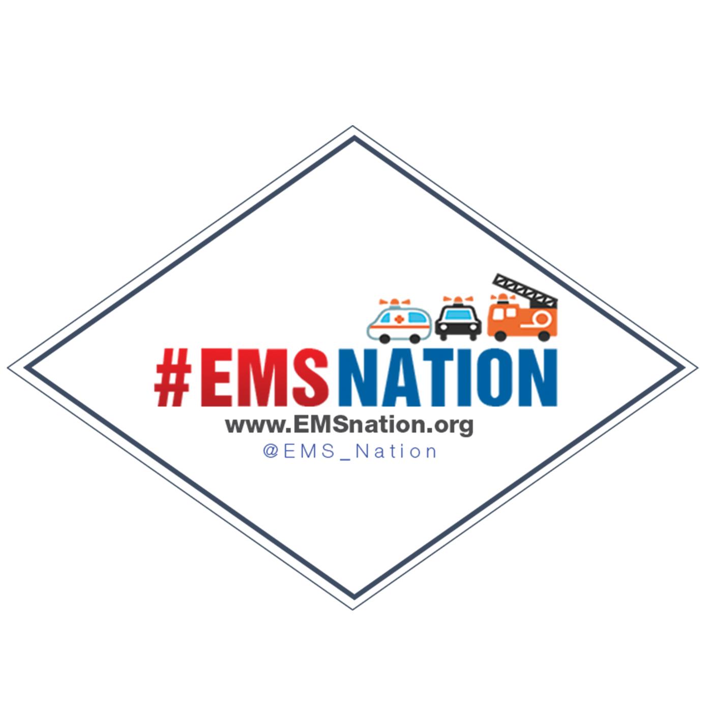 EMS Nation show art