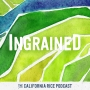 Artwork for Episode 26: Water Planning in the Sacramento Valley