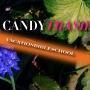 Artwork for EC025 - Candy Trash