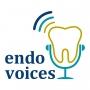 Artwork for Trailer for Endo Voices
