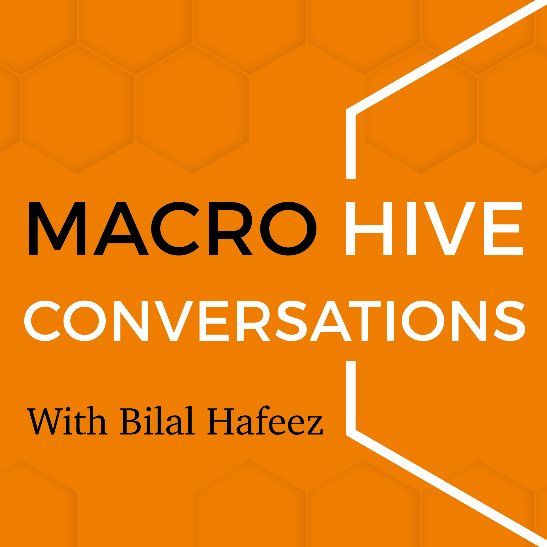 Macro Hive Conversations With Bilal Hafeez show art