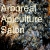 Aboreal Apiculture Salon #7 with Torben Schiffer show art