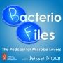 Artwork for BacterioFiles 338 - Maverick Mouse Microbes Mitigate Maladies