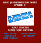 Artwork for Agile Coaches: Start, Stop, Continue