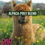 Artwork for Alpaca-Poly Blend: Dad Jeans 120