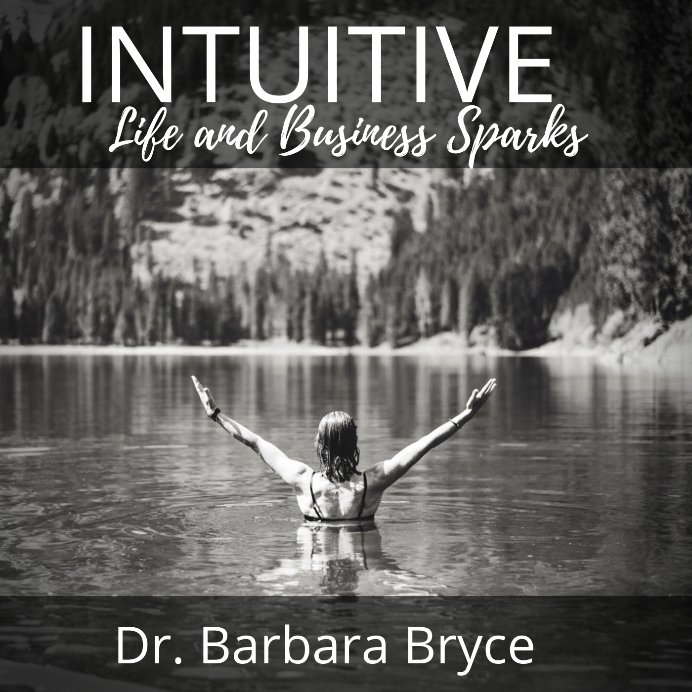 Intuitive Life and Business Sparks - reconnect to your intuition with Dr. Barbara Bryce show art