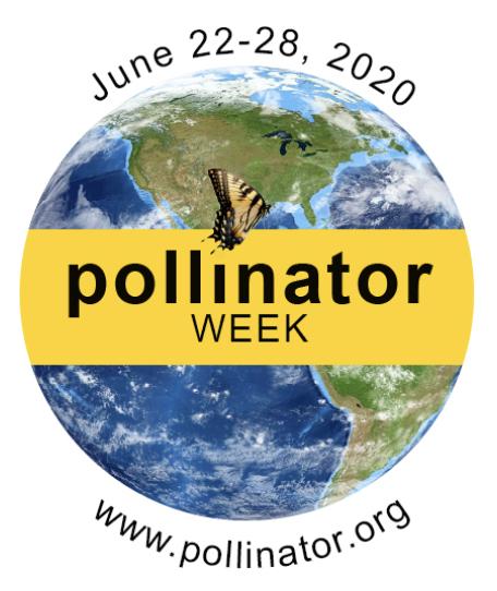 Pollinator Week 2020