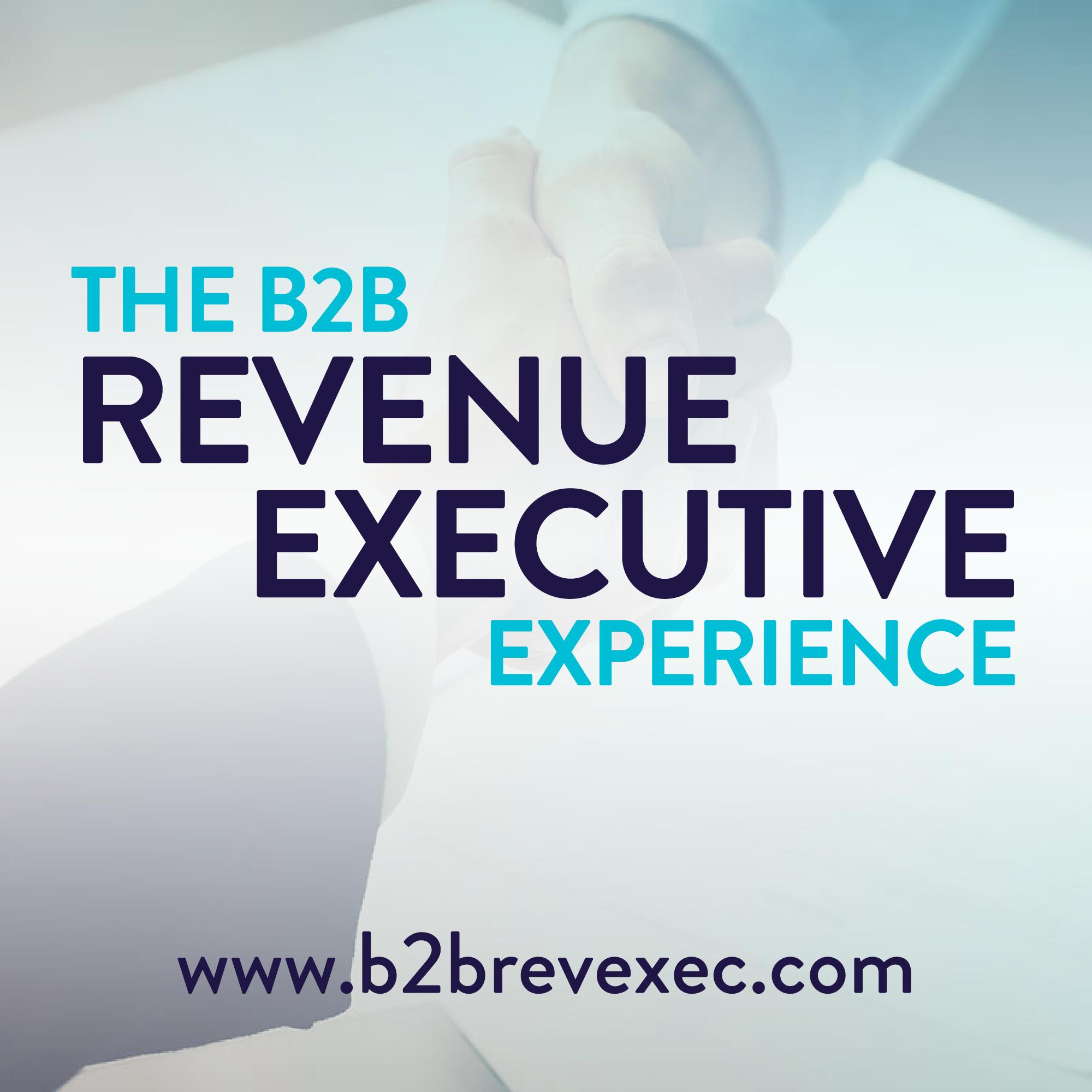 The B2B Revenue Executive Experience show art