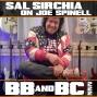 Artwork for EP222 - Sal Sirchia Interview