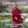 Artwork for FEP21 Exploring Anger