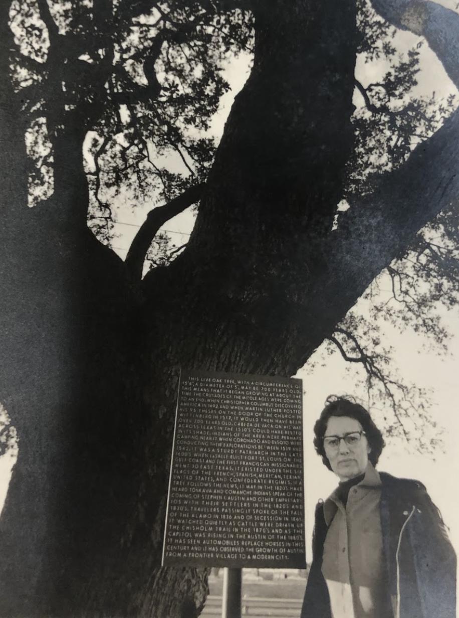 "Virtual Flora & ""Tree Lady"" Margret Hofmann"