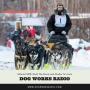 Artwork for Iditarod 2018: Mush the Movie