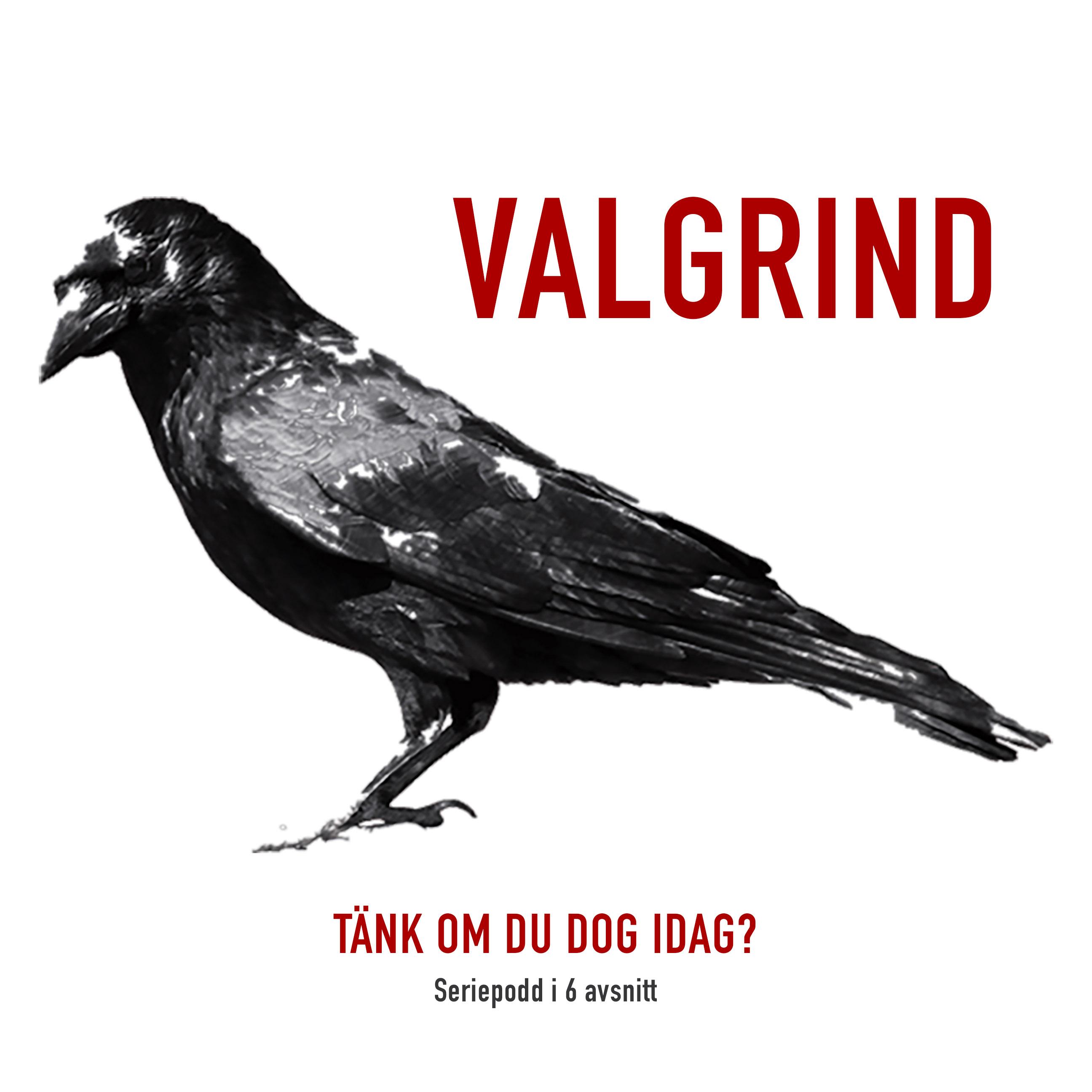 Valgrind show art