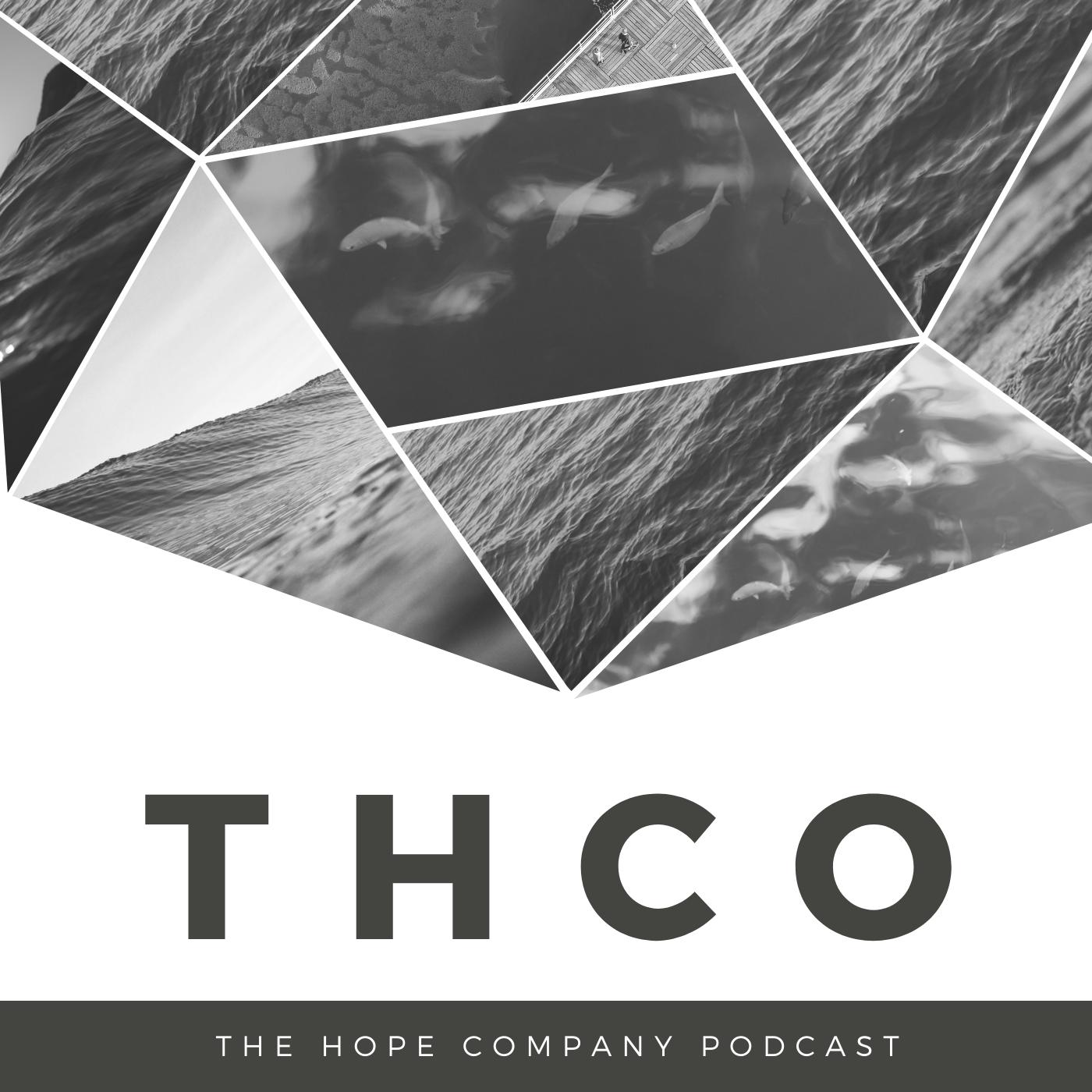 The Hope Company show art