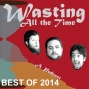 Artwork for Ep. 100a - Wasting ALL the Year 2014