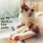 Artwork for Episode 76: Mystic Toe Pads