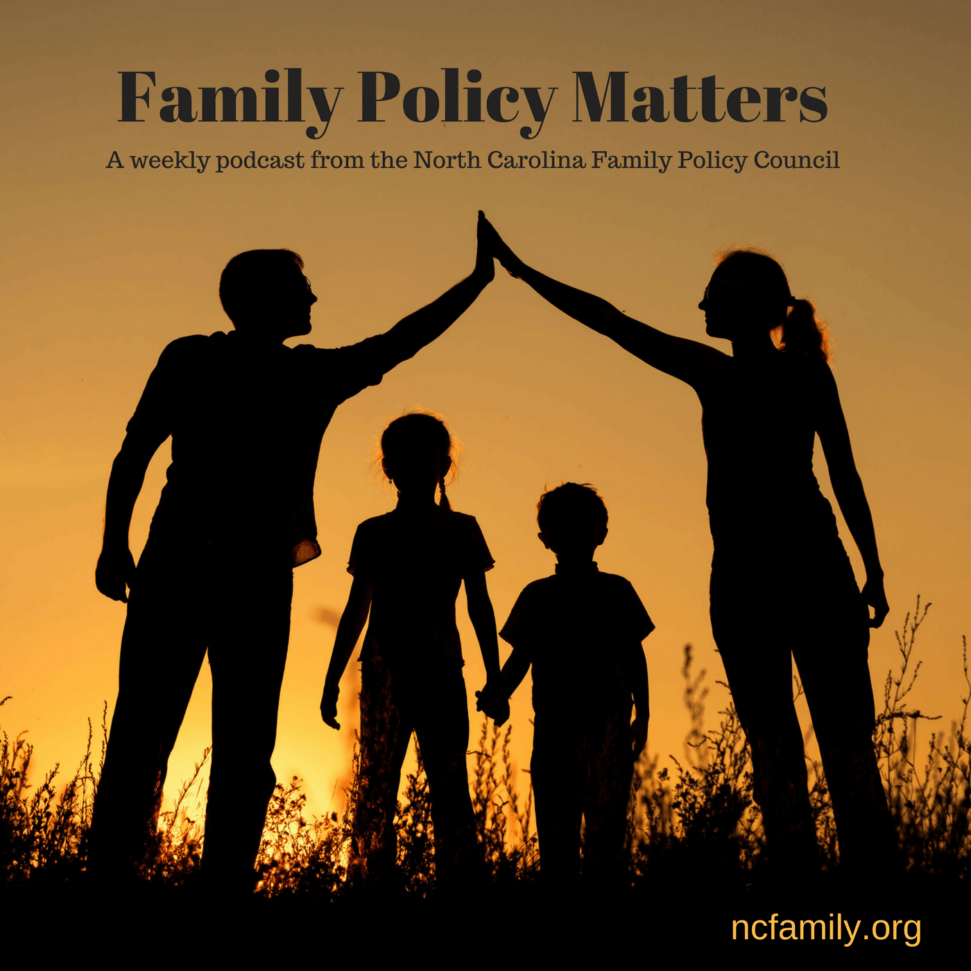 NC Family's Family Policy Matters show art