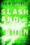 Artwork for Slash and Burn by Colin Cotterill