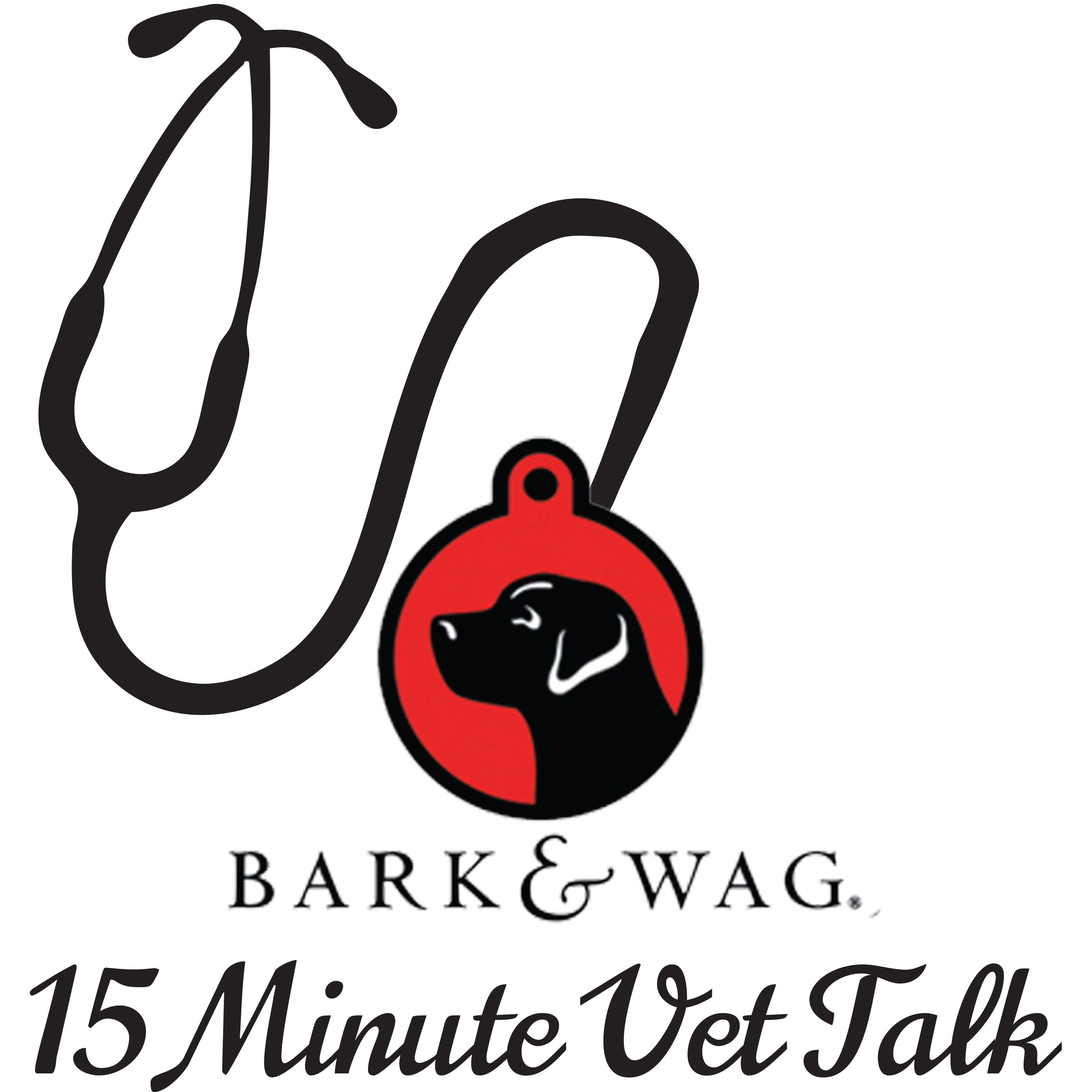 Bark n Wag 15 Minute Vet Talk show art