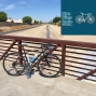 Artwork for Ride Bikes Radio 27: Oprah Doesn't Ride Bikes