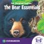 Artwork for The Bear Essentials