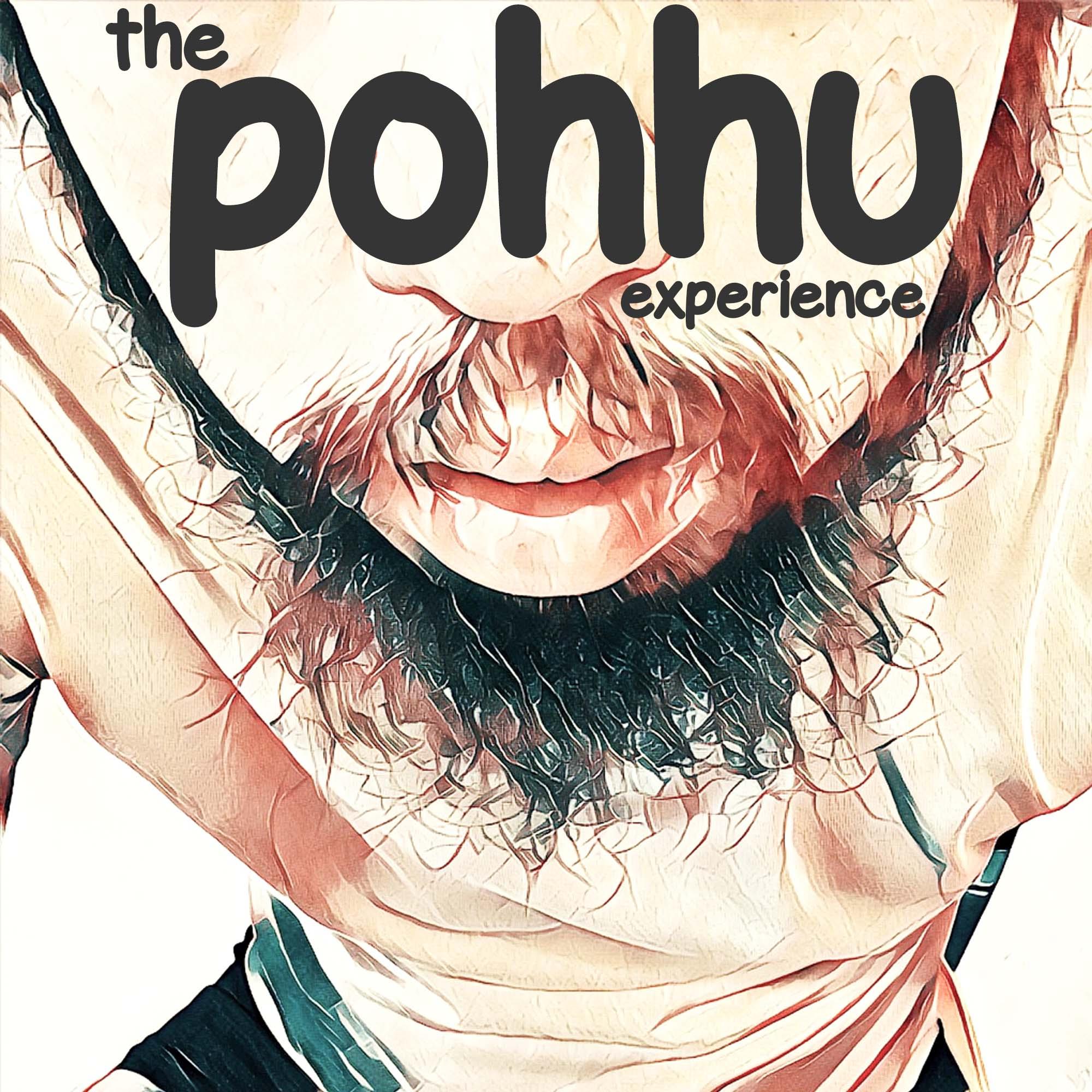The Pohhu Experience show art