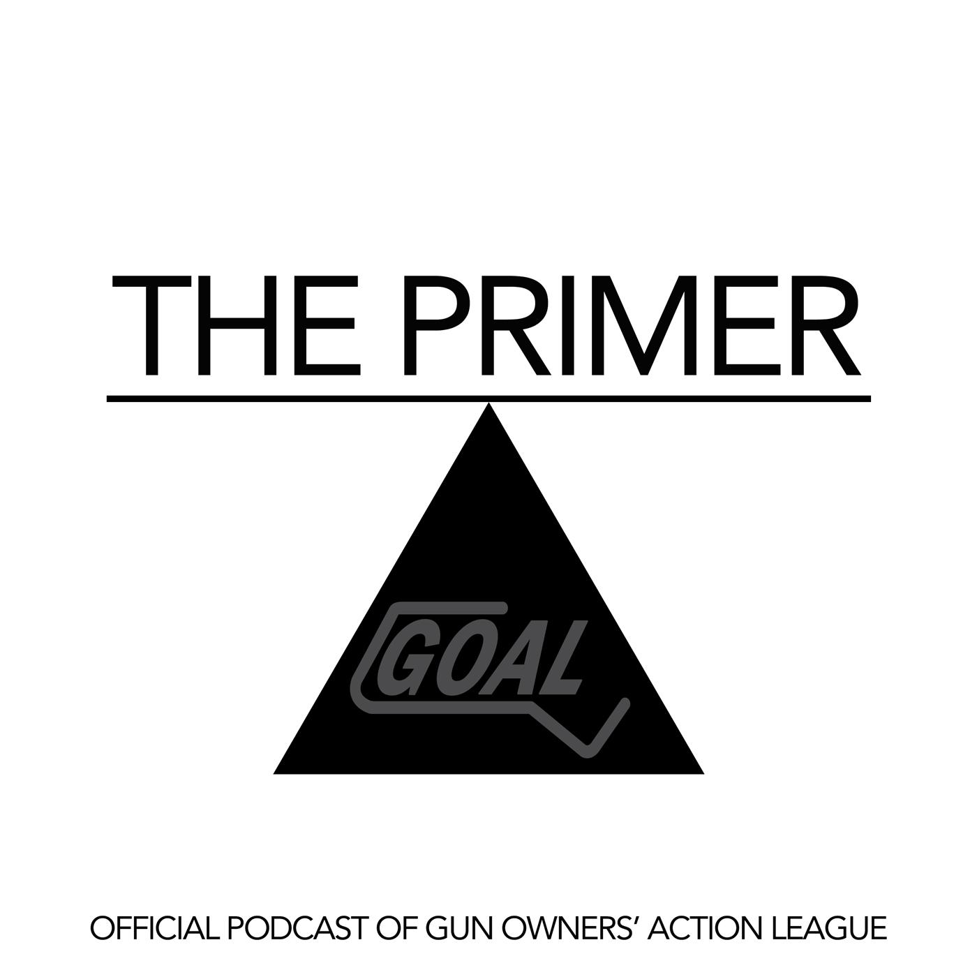 Artwork for The Primer - Episode 19 - Extreme Risk Legislation