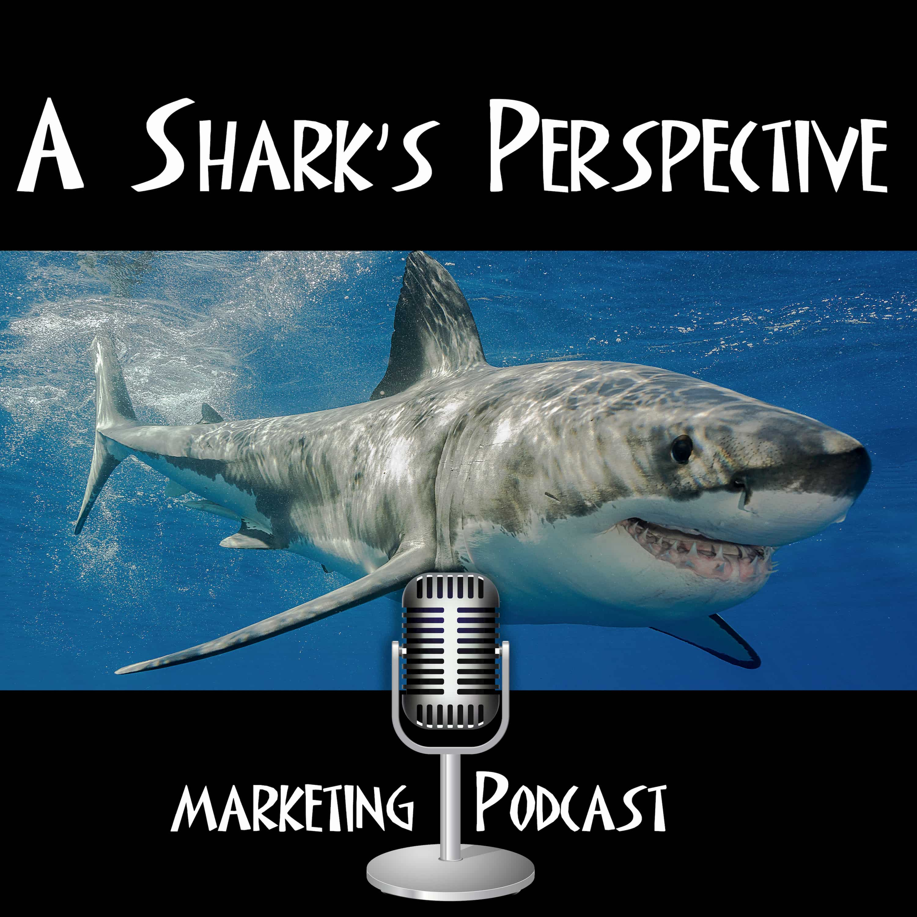 A Shark's Perspective podcast show image