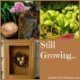 Artwork for SG581: Stylish Outdoor Garden Containers with DIY Divas Annette Gutierrez and Mary Gray of Potted