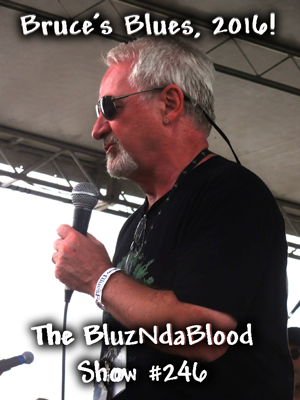 The BluzNdaBlood Show #246, Bruce's Blues, 2016!