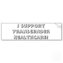 Episode 20:  Trans Healthcare Part 2 of our Interview with Jennifer Jones-Vanderleest, MD