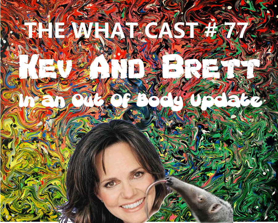 The What Cast #77 - A Shamanic Update with Kev and Brett