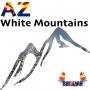 Artwork for AZWM - Community Shout - 10-22-20 - FAC Event - NCDP Event