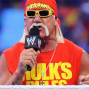 Artwork for Hulk Hogan talks WrestleMania 30, if he would return to the ring (Wrestleview.com)