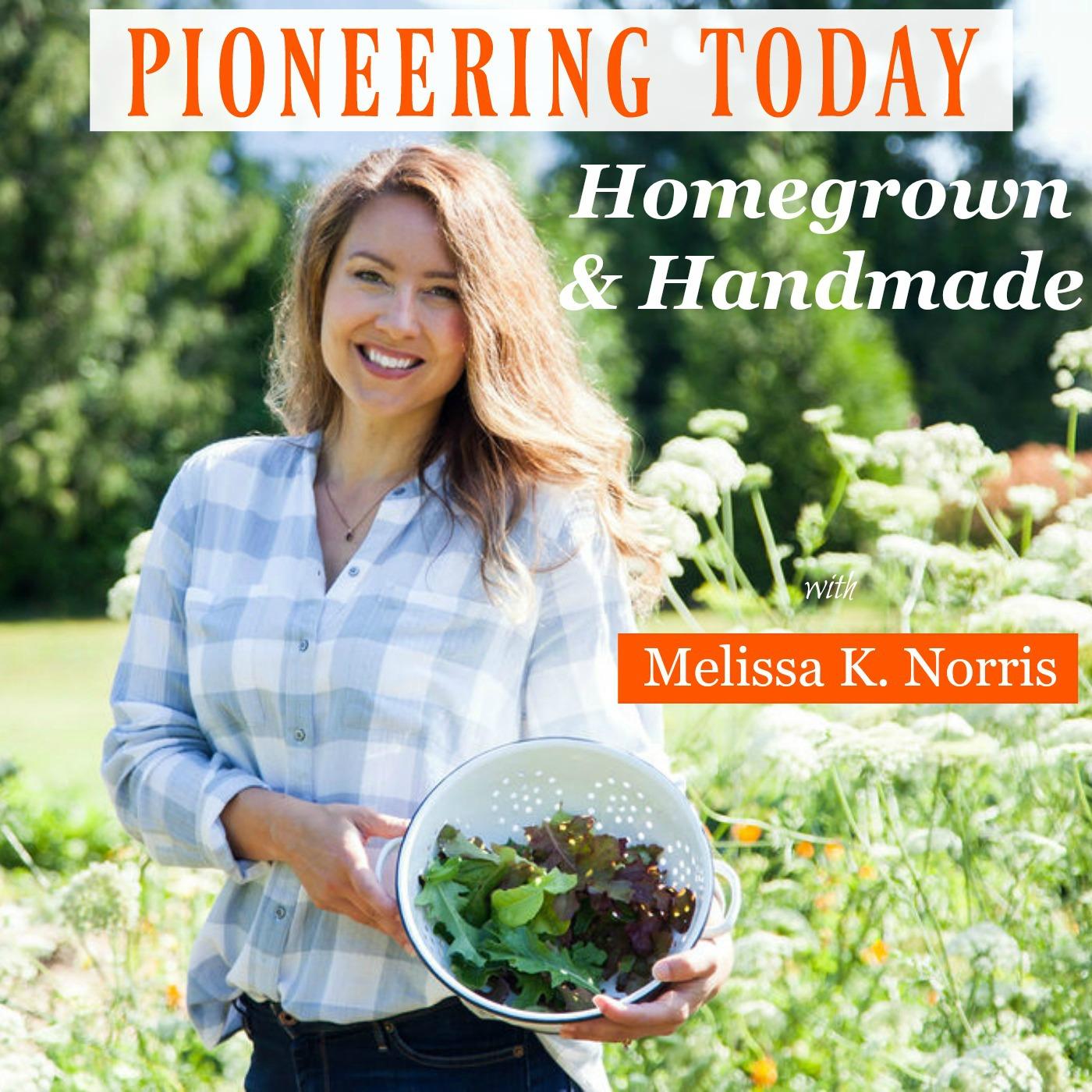 Pioneering Today with Melissa K. Norris show art