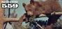 Artwork for Mousetalgia Episode 559: Olympic Game Farm, Happy Haunts Materialize