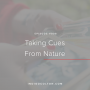 Artwork for Ep. 008 | Taking Cues from Nature with Shelly Jackson Buffington