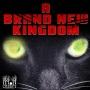 Artwork for A Brand New Kingdom