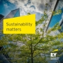 Artwork for Integrating natural capital into business decision-making