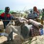 Artwork for Allégement de la Dette de 1,1 Milliard de Dollars en Faveur du Tchad