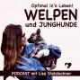 Artwork for Persönlicher Einblick - WINTERPAUSE des Welpen und Junghunde Podcasts bis 8.1.2020