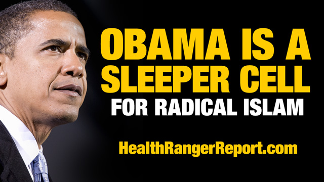 Artwork for Obama is a Sleeper Cell