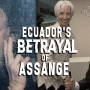 Artwork for What's behind Ecuador's betrayal of Assange? Ex-Foreign Minister Guillaume Long explains