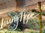 Artwork for LIVING HOPE - Hope On Trial