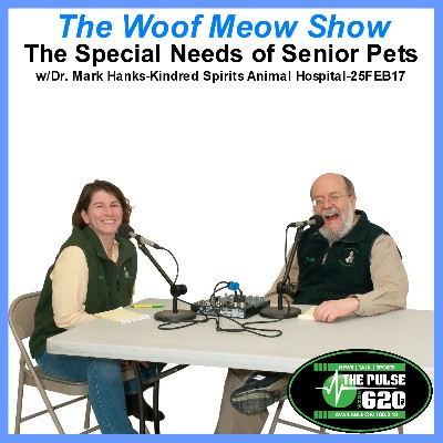The Special Needs of Senior Pets with Dr. Mark Hanks from Kindred Spirits Veterinary Clinic